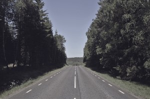 Landsväg med skog CC0 licens